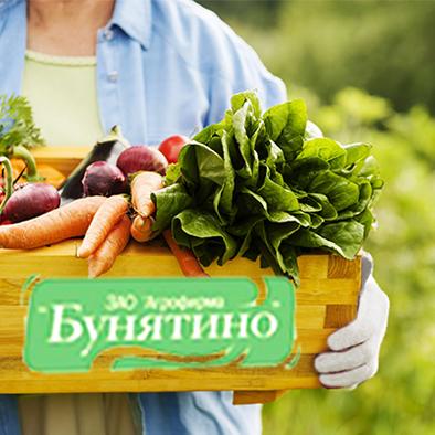 """Агрохолдинг """"Дмитровские овощи"""" выбирает OSTROV"""